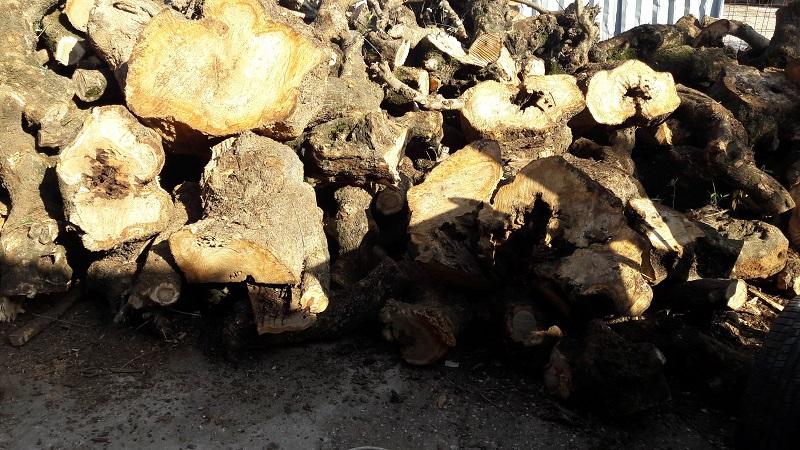 Καυσόξυλα ελιάς ξύλα τζακιού σόμπας